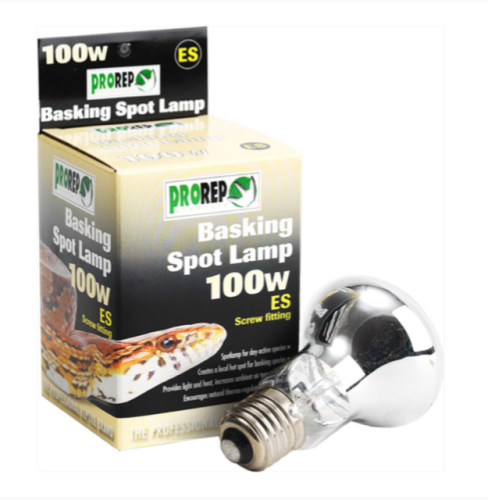 100W ES CLEAR Heat Lamp
