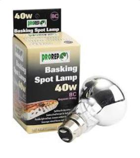 40W BC CLEAR Spot Lamp