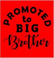 Promoted To Big brother/sister tshirt