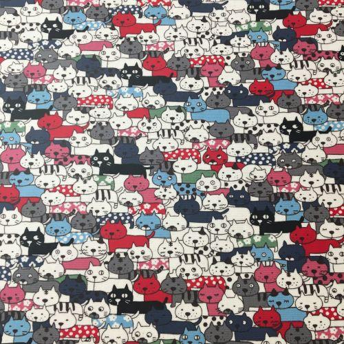 Colourful Cats Laminated Fabric