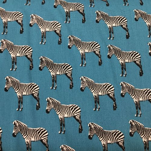 Zebra on Blue