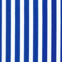 Cotton Poplin Blue Stripe