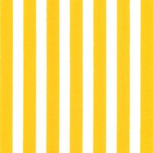 Cotton Poplin Yellow Stripe