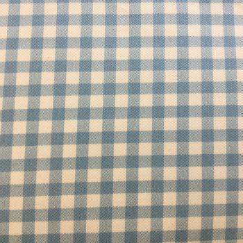 Gingham Cotton Canvas Baby Blue