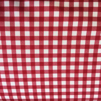 Gingham Cotton Canvas Red