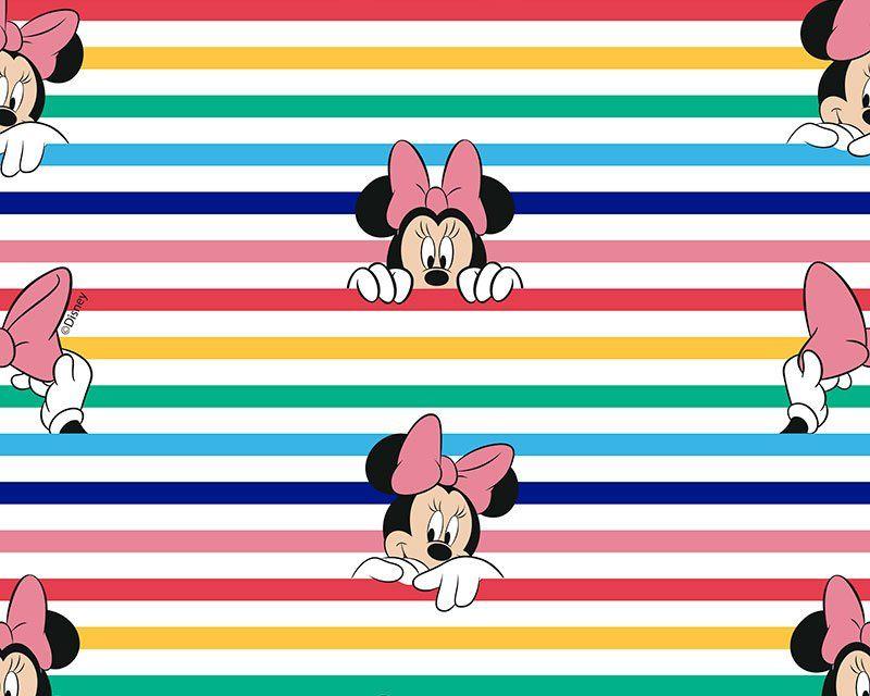 Little Johnny Disney Rainbow Minnie Mouse