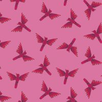 Dashwood Studio Night Jungle Birds Pink