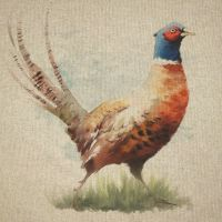 Pop Art Linen Look Cotton Canvas Panel Pheasant