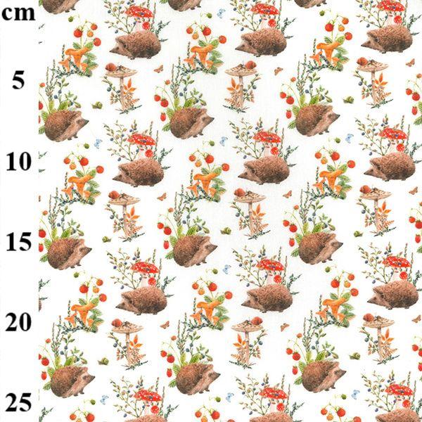 Cotton Fabric Hedgehogs