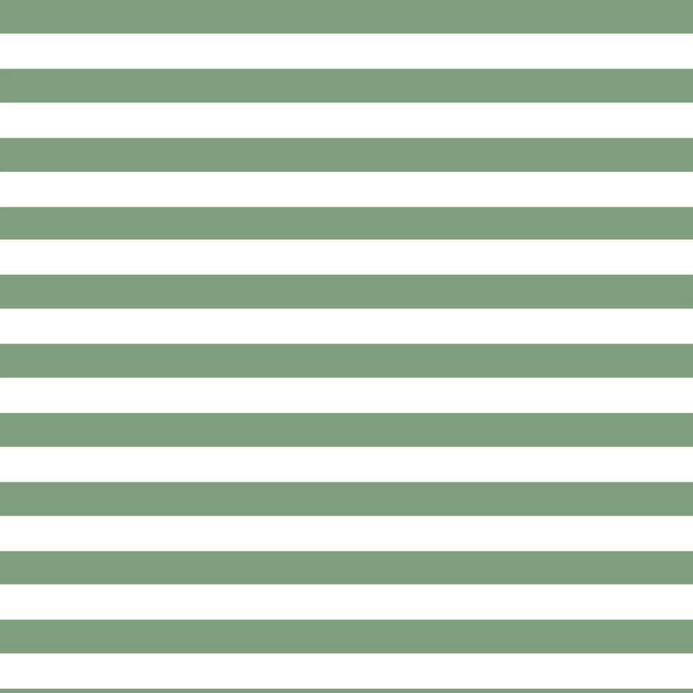 Cotton Jersey Fabric Stripe Mint
