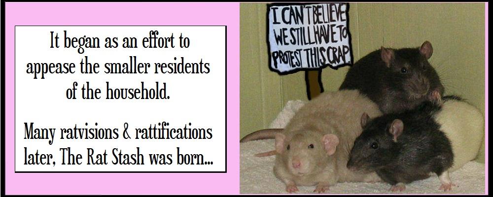Fuzzy Protest