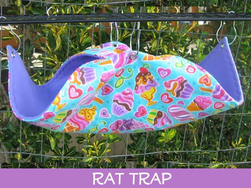 <!-- 0005 -->Rat Trap