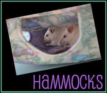 Shop Hammocks