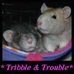 Tribble and Trouble