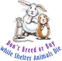dont-breed-or-buy