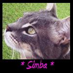 Simba Memorial