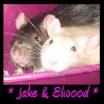 Jake Elwood Memorial