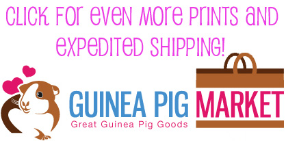 Corner Curtains at Guinea Pig Market