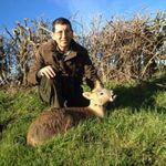 client with deer