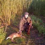 Client with Muntjac