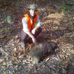 First boar with Stalking in England ltd