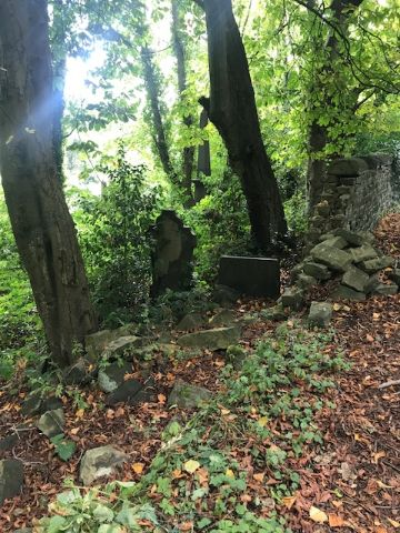 Gravestones in a overgrown forest