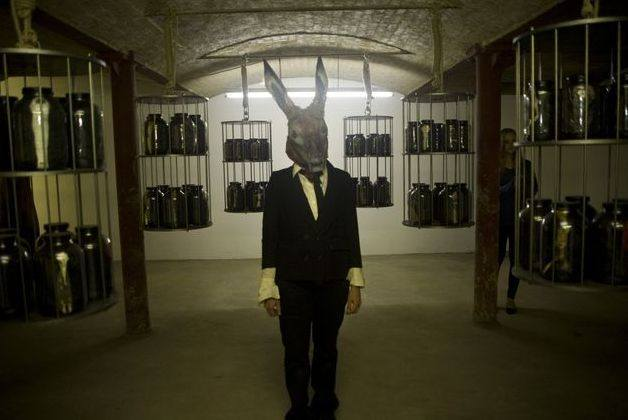 A human figure dressed in a suit, with a hares head, is standing in a cellar, staring at the camera