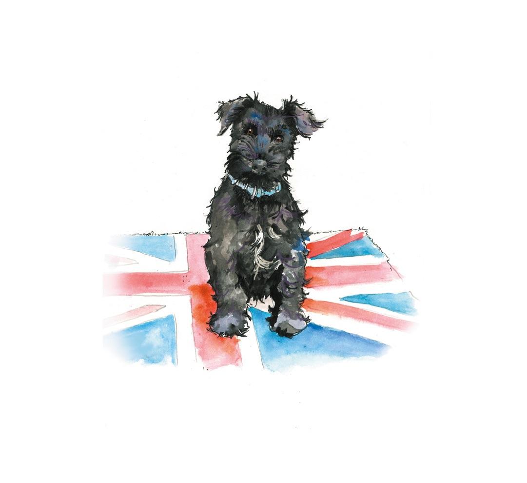 Dog portraits 2