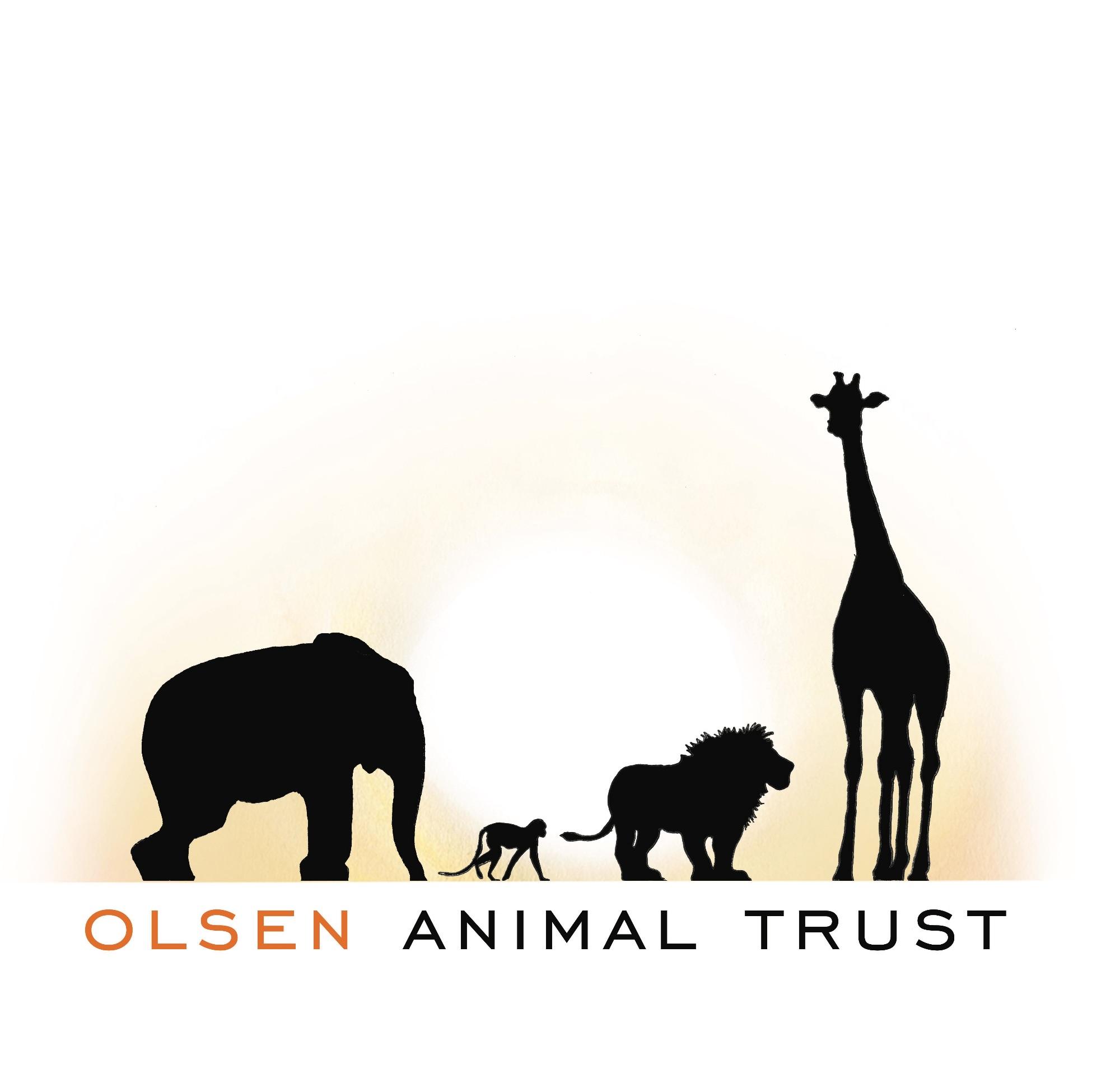 400dpi  primary Logo with African Elephant draft copy.jpg