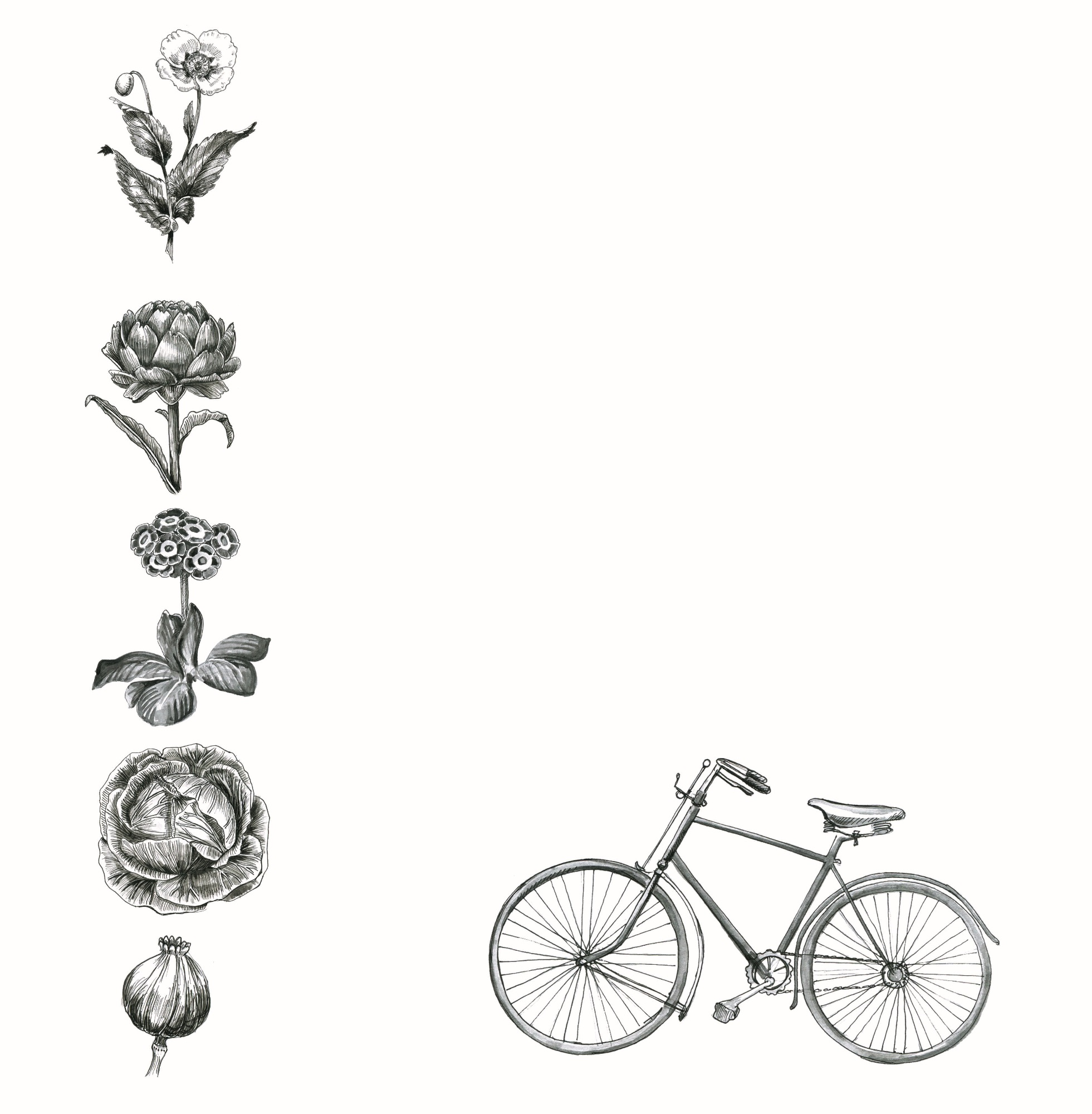 etchings.jpg