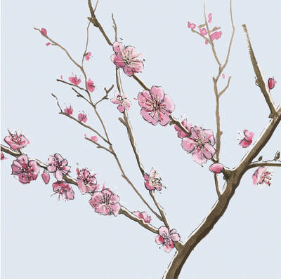 Blossom notelets