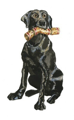 Black Lab - pack of Christmas card