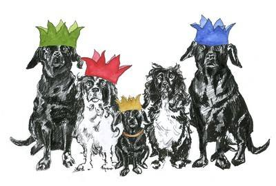 Fiove dogs - pack of Christmas cards