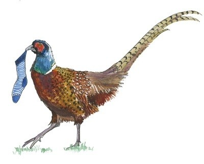 Pheasant - pack of Christmas cards