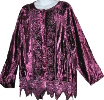 Gorgeous arizona velvety embroidered top
