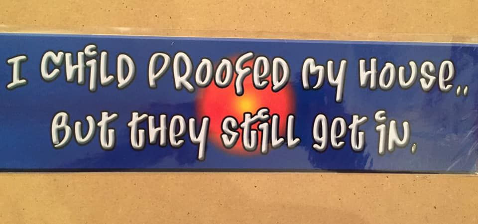 Fun bumper sticker, I child proofed my house but they still get in