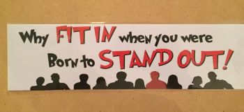 Fun bumper sticker, Why fit in when you were born to stand out