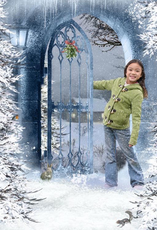 Winter Snow fantasy photo portrait