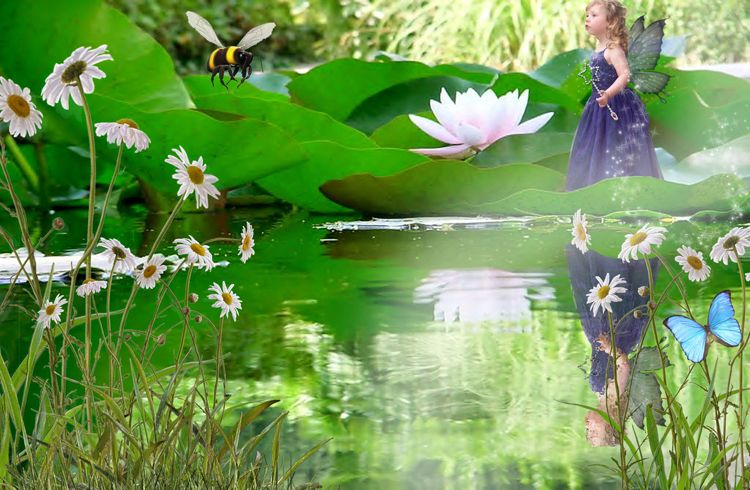 Lily Pond fairy tale fantasy photo portrait