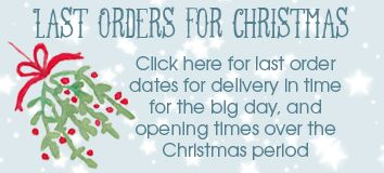 PhotoFairytales Christmas opening times
