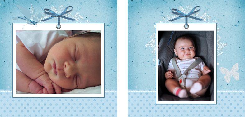 Personalised Photo Albums   Blue Bird design, handmade pocket sized keepsake photo album from PhotoFairytales