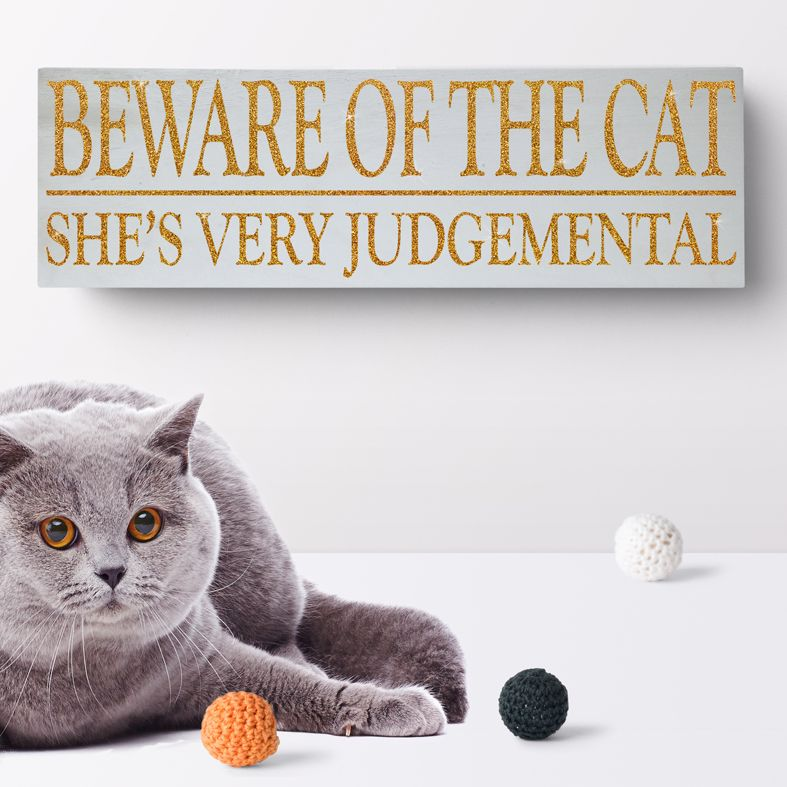 Beware of the Cat Bespoke Wooden Typography Sign | handmade wooden signs and plaques from PhotoFairytales