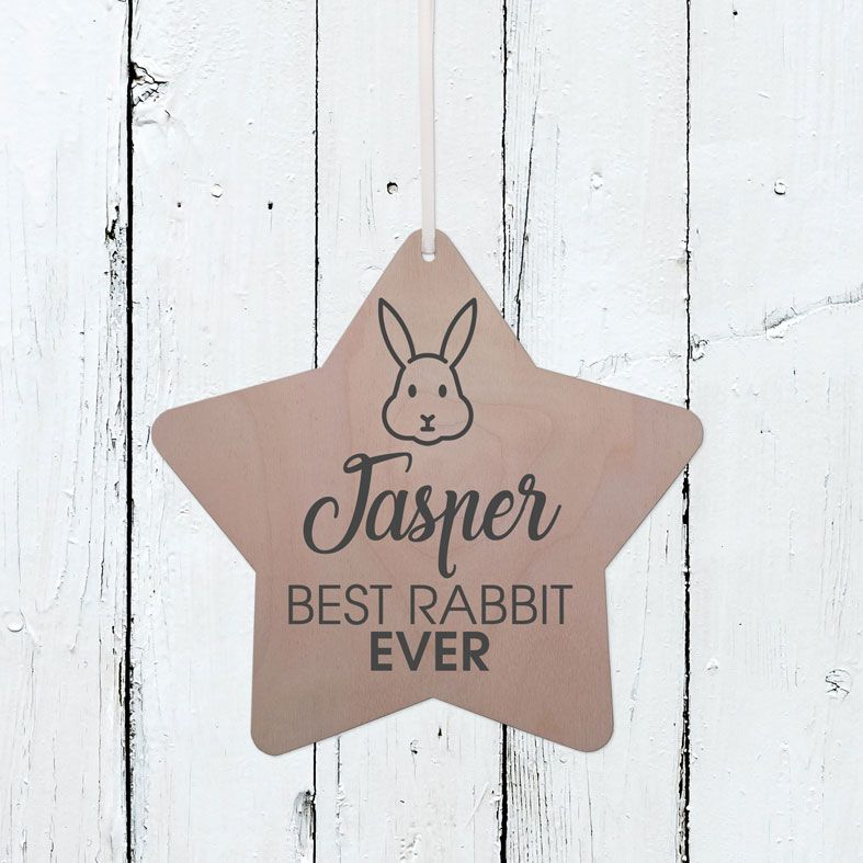 Personalised Best Rabbit Wooden Plaque | Handmade birch wood hanging sign, personalised gift for rabbit lover #rabbitlovergift #bunnygift