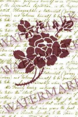 A7 Rose Script