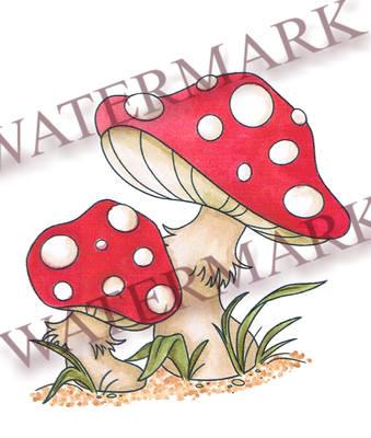 Mushrooms (Pre - Order)