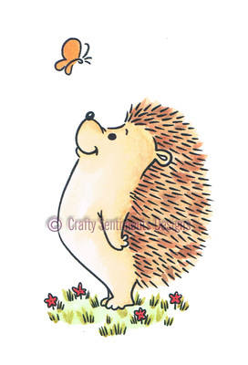 Hedgehog - Hello!