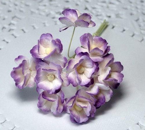 TWO TONE PURPLE SWEETHEART BLOSSOM FLOWERS
