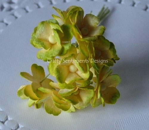 TWO TONE YELLOWY GREEN - SWEETHEART BLOSSOM FLOWERS (pack of 10)
