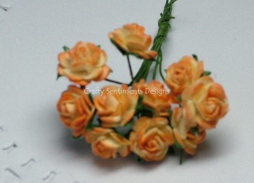 2 TONE  OPEN ROSES 10 mm (Pack of 10)