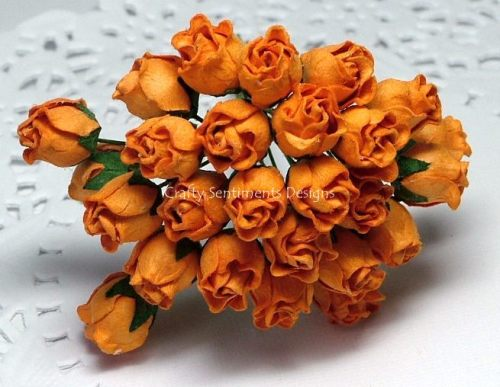 ORANGE ROSEBUDS (Pack of 10)